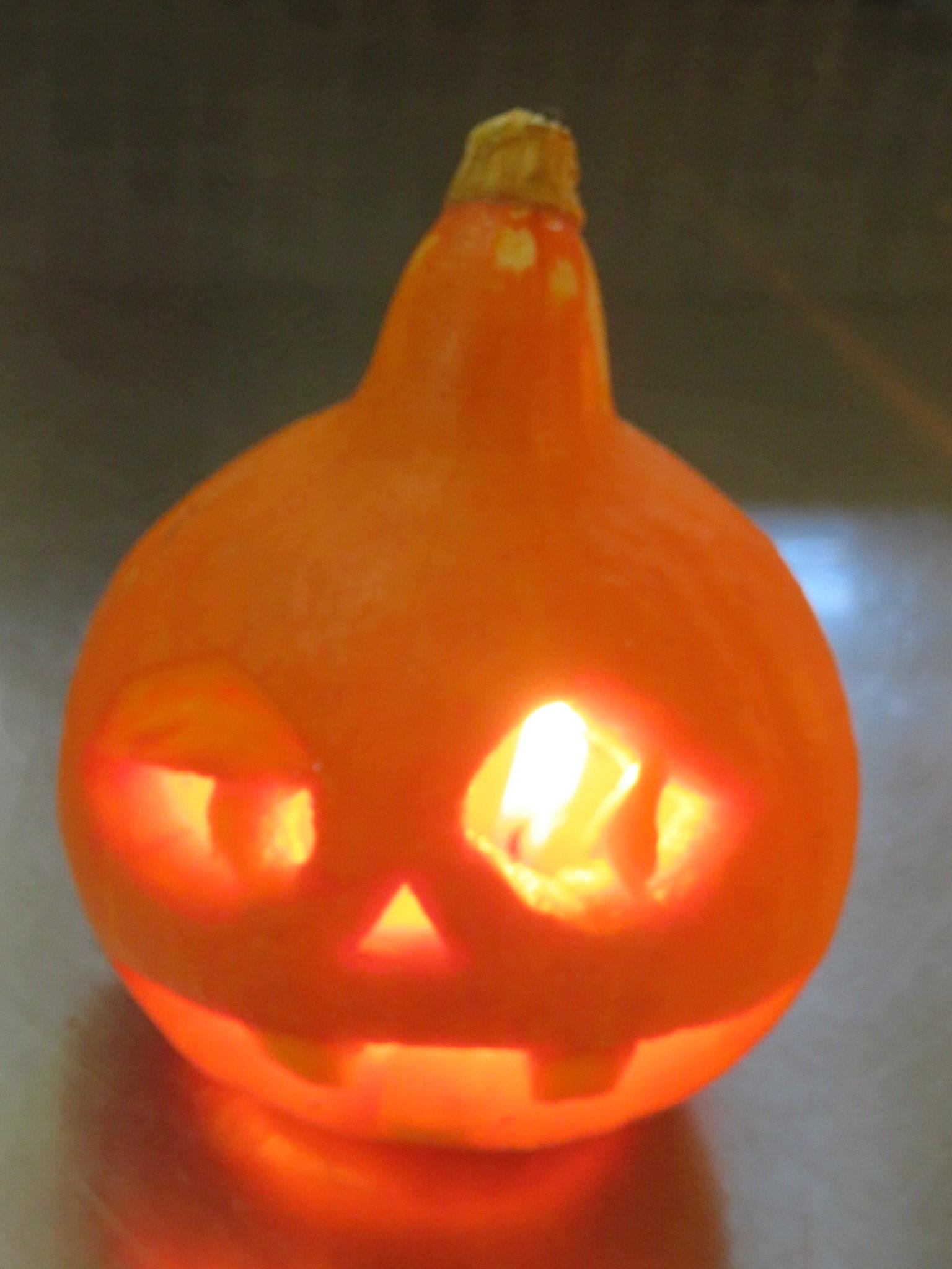 【活動報告】かぼちゃランタン作り体験