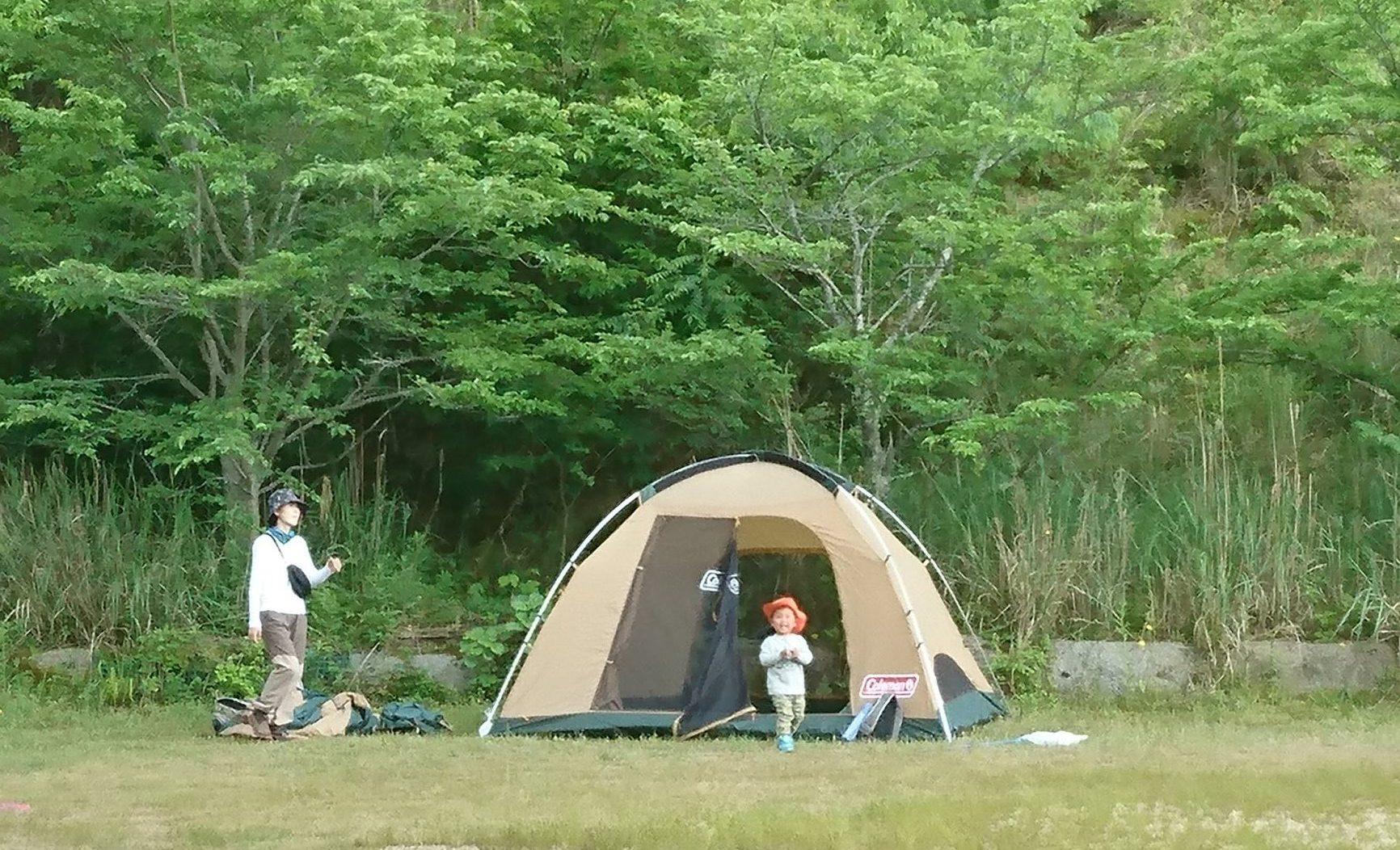 【イベント情報】2018/5/12(土)11:00~13:00 moss-connect 苔テラリウム~自分だけの小さな森づくりを楽しむ会~